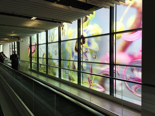 ガラス全面に貼った大型透明マーキングフィルム(透明シール)